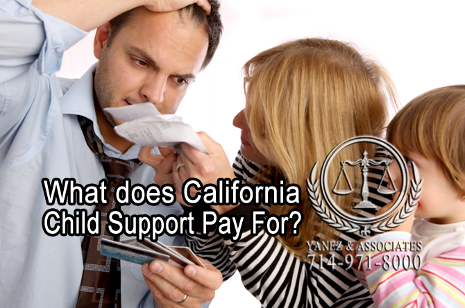 What does California Child Support Pay For?