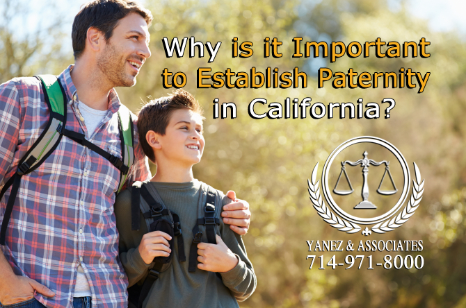Why is it Important to Establish Paternity in California?
