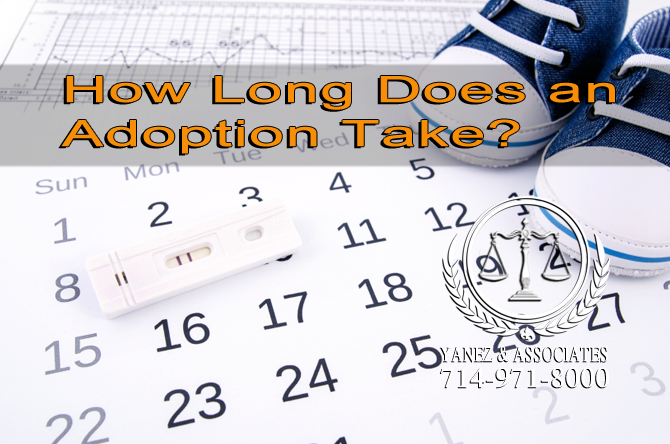 How Long Does an Adoption Take?
